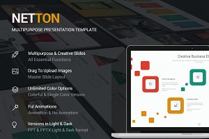 Netton Business Theme