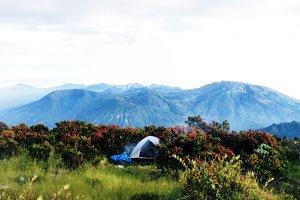 Top Mountain Sindoro