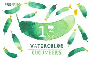 13 VEGETABLE WATERCOLOR ELEMENTS