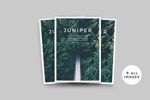 J U N I P E R  Magazine / Portfolio