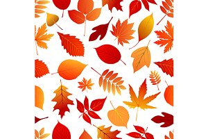 Autumn red and orange leaves pattern