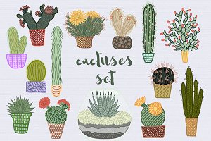 Cactuses set