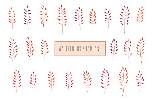 + Watercolor leaves set +