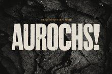 Aurochs: letterpress type family by  in Fonts