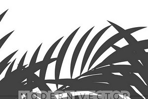 background  palm leaves