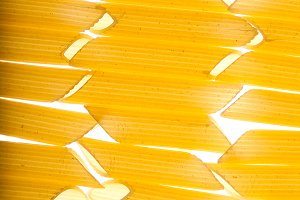 Pasta closeup background