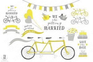 Tandem bicycle, wedding, gray yellow