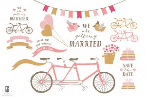 Tandem bicycle, wedding pink gold