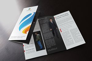 Professional Tri Fold Brochure