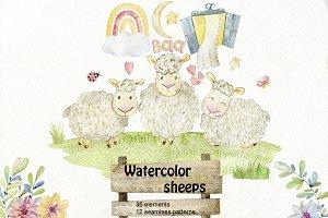 Watercolor sheeps. Kit.