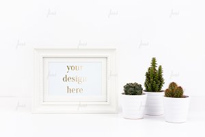Simple dotted white frame with cacti
