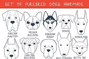Set 24 breeds dogs, handmade