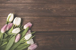 Tulips on a brown wooden background