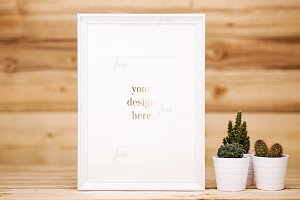 White frame with cacti ♥