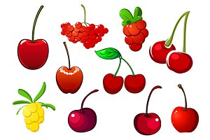 Colored fresh berry icons set