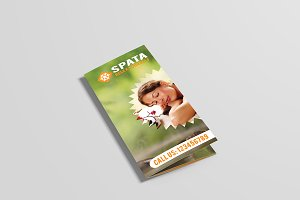 Spata Spa & Beauty Tri Fold Brochure