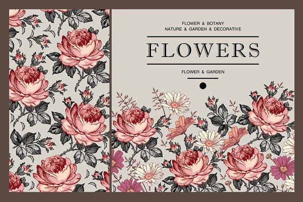 Set. Roses. Flowers. Card, frame.