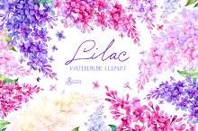 Lilac. Watercolor collection
