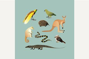 Set Of Different Australian Animals.