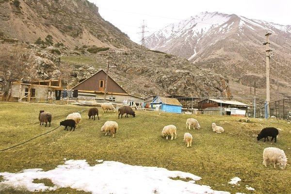 Village in Caucasus mountain