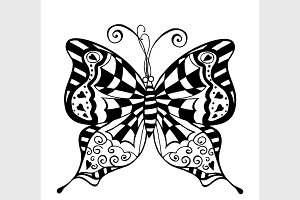 black and white butterfly.