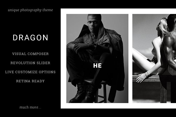 Dragon: Unique Photography Theme