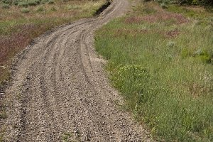 Dirt Trail (Photo)