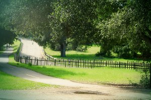 Old Country Road (Photo)