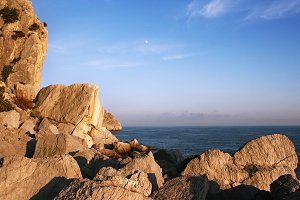 Simeiz rocks & sea