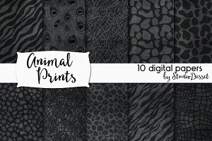 Animal Prints - Chalkboard Patterns