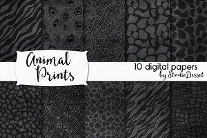 Animal Prints - Chalkboard Patterns