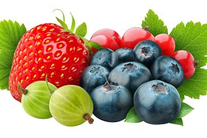 Various fresh berries isolated