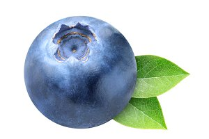 One blueberry isolated with leaves