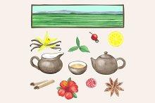 Tea Watercolour Collection
