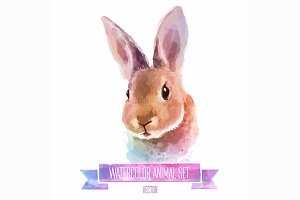 Watercolor set of animals | Rabbit