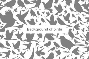 Background of birds