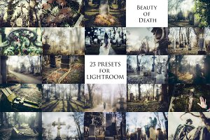 """Beauty of Death"" 23 presets for LR"