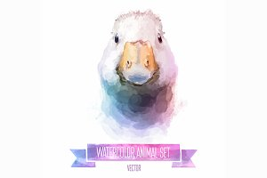 Watercolor set of animals | Gus