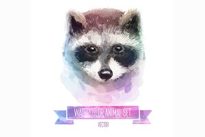Watercolor set of animals | Raccoon