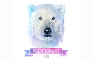 Watercolor set of animals |Polarbear