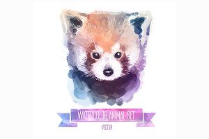 Watercolor animals | Red panda