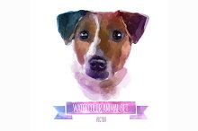 Watercolor animals | Jack Russell