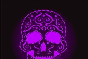 skull vector neon violet