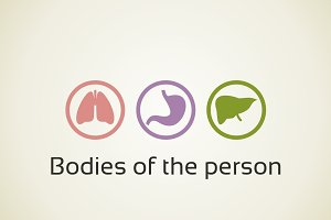 Bodies of the person