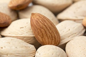 Almonds with Shells