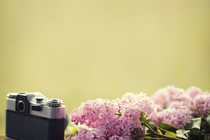 old camera and lilac