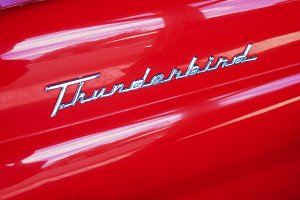 Classic Car Thunderbird Emblem