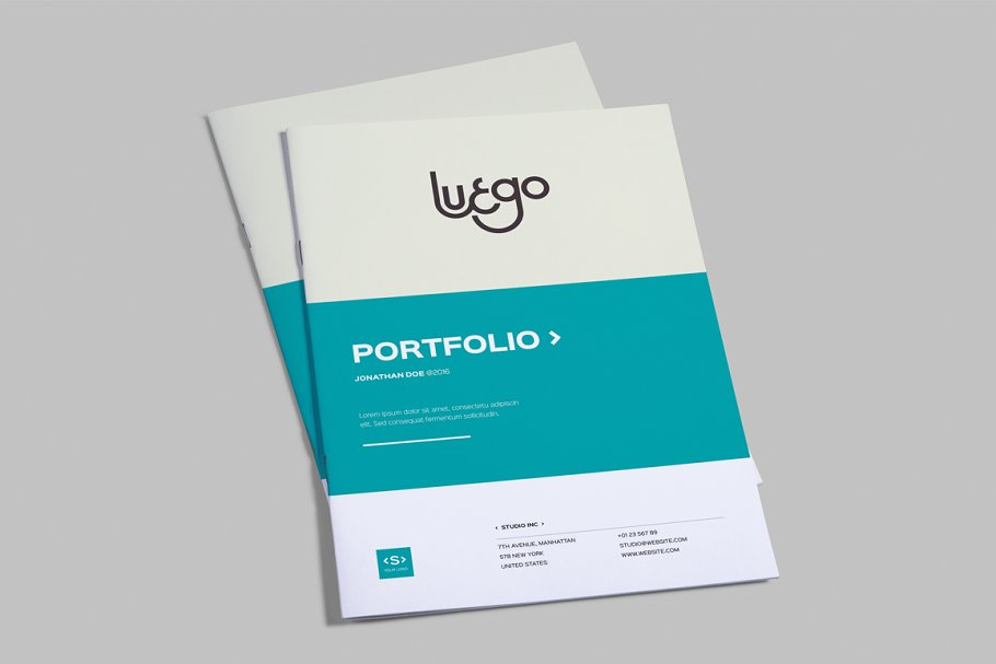 Indesign Portfolio Template Brochure Templates Creative