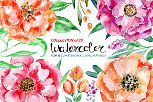 Watercolor flowers set, 23 elements