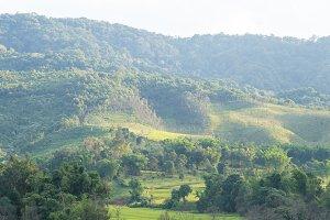 Hills and farmland